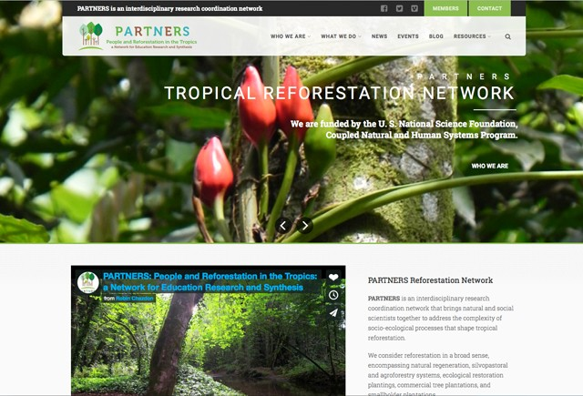 Reforestation in the tropics