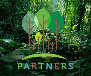 PARTNERS Website