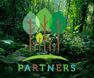 PARTNERS Website